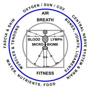 Whole Health Body Systems: medical structural therapy