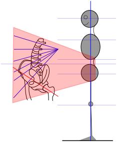 structural evaluation for mindful medical massage - structural bodywork